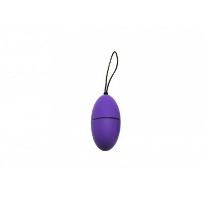 Remote Control Egg G2 - Purple
